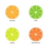 bär fruktt den citrusa konditionen för bakgrund sund isolerad white för stil för skivor för stycken för kiwilivstid orange Royaltyfri Foto