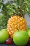 bär fruktt tropiskt Royaltyfri Foto