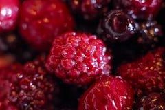 Bär, hallon och blåbär, blandade bär, vitaminmat Royaltyfria Bilder