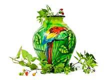 bär målad wild papegojavase Arkivbild