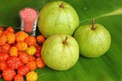 Bär och guava Arkivbild