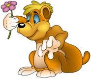 Bär mit Blume Stockbild