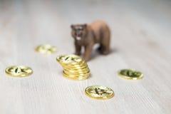 Bär mit Fokus Gold-Bitcoin Cryptocurrency auf Münzen Baissemarkt-Wall Street-Finanzkonzept stockfoto