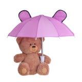 Bär mit Regenschirm Stockfotografie