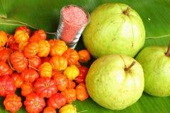 Bär och guava Royaltyfria Bilder