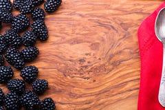 Bär på träbakgrund Royaltyfri Foto