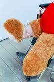Bär und Rollstuhl Stockfoto