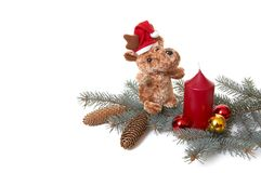 Bär und Weihnachtsdekorationen. Lizenzfreie Stockbilder