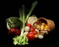 bära fruktt grönsaker Arkivfoto