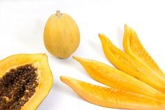 bära fruktt papayaen Arkivfoton