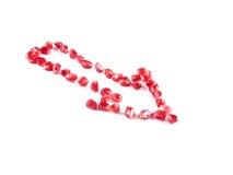 Bära fruktt sammansättning från granatröttbär Royaltyfri Foto