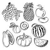 Bära fruktt uppsättningen Arkivbilder