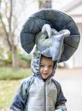 Bärande dinosauriedräkt för pojke Arkivfoto