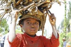 Bärande filialer för fattig malagasy pojke på hans huvud Royaltyfri Fotografi