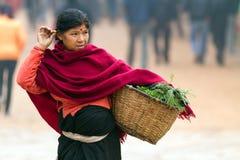 Bärande korgmat för nepalesisk kvinna Arkivfoto