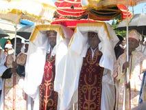 bärande prästtabottimket Royaltyfria Foton