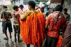 B?rande ringblomma f?r indisk man som ?r galant f?r f?rs?ljning p? den Mullick Ghat blommamarknaden i morgonen i Kolkata, Indien royaltyfri foto