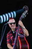 Bärande solglasögon för musiker royaltyfri bild