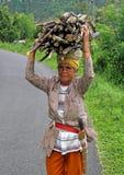 BÄRANDE TRÄ FÖR KVINNA I INDONESIEN royaltyfri fotografi