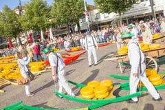 Bärare som går med många ostar i den berömda Alkmaaren, marknadsför arkivfoton