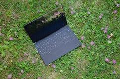 Bärbar dator bland växt av släktet Trifoliumblommor Arkivfoton