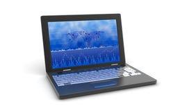 Bärbar dator med affärstillväxtgrafen Arkivbild