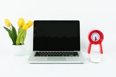 Bärbar dator- och blomkrukaisolat Royaltyfri Bild