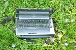 Bärbar dator på sommargräset Arkivfoto