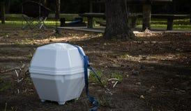 Bärbar satellit- maträtt för att campa och att resa Fotografering för Bildbyråer