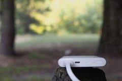 Bärbar uppladdare Driva banken med kabel mot bakgrunden av naturen och trä royaltyfria foton