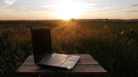 Bärbara datorn ligger i ett härligt fält av växter på solnedgången Moving kamera arkivfilmer