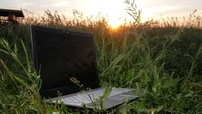 Bärbara datorn ligger i ett härligt fält av växter på solnedgången Moving kamera lager videofilmer