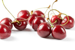 bärCherry Arkivfoton