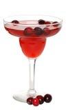 bärcoctailcranberry royaltyfri foto