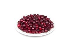 bärcranberriessaucer Fotografering för Bildbyråer