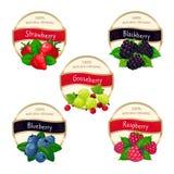Bärdriftstopp- och marmeladetiketter Ny vektor för klistermärkear för frukter för hallon för björnbär för jordgubbeblåbärkrusbär royaltyfri illustrationer
