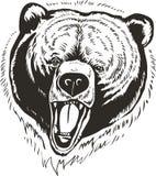 Bären-Hauptvektor stock abbildung