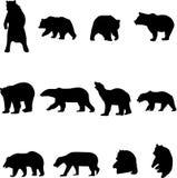 Bären und chinesische Pandas Lizenzfreie Stockfotos