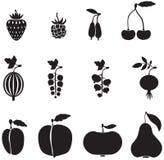 bärfrukter royaltyfri illustrationer