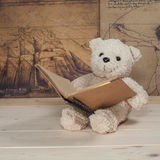 Bärnspielzeugholding und -lesung ein Buch Lizenzfreies Stockfoto