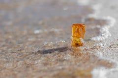 Bärnstensfärgad stencloseup på den baltiska kusten arkivfoton