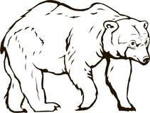 Bärnvektor blackbear lizenzfreie abbildung