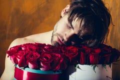 Bärtiger muskulöser Mann mit sexy Körper hält Rotrosenkasten Stockbilder