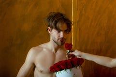 Bärtiger muskulöser Mann mit sexy Körper hält Rotrosenkasten Lizenzfreie Stockbilder