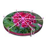 bäst choice lektabell för blomma 3d stock illustrationer