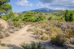 Bästa bana för berg Arkivfoton