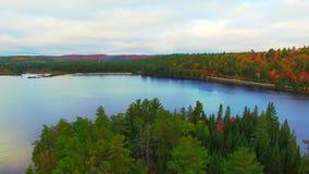 Bästa landskapsikt för antenn 4k på liten grön skog på en ö i bergsjön arkivfilmer