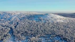 Bästa sikt av bergstoppet som täckas med snö footage Vinterlandskap av bergområde med den täckte täta barrskogen royaltyfri bild