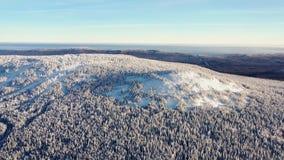 Bästa sikt av bergstoppet som täckas med snö footage Vinterlandskap av bergområde med den täckte täta barrskogen royaltyfri fotografi