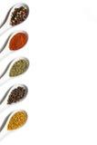 Bästa sikt av blandade aromatiska smaktillsatser i keramiska skedar Arkivfoto